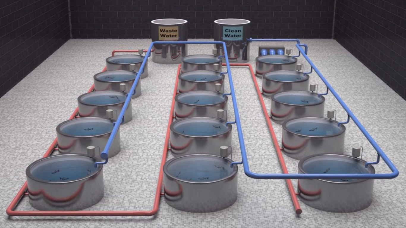 Illustration of Recirculating Aquaculture Systems (RAS)